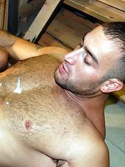 Wood, Sweat, Cum
